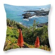 Catalina Island Coastline Throw Pillow