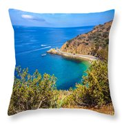 Catalina Island Lover's Cove Picture Throw Pillow