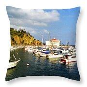 Catalina Kodachrome Throw Pillow