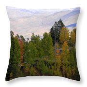 Catalina Mountains In The Fall Throw Pillow