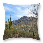 Catalina State Park 2 Throw Pillow