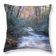 Cataloochee Creek Throw Pillow