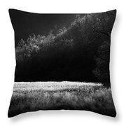 Cataloochee Morning Throw Pillow