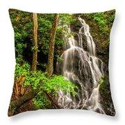 Cataract Falls In Great Smoky Mountains National Park Throw Pillow