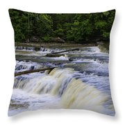 Cataract Falls Phase 1 Throw Pillow