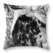 Catastrophe Throw Pillow