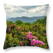 Catawba Rhododendrons Throw Pillow