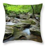Catawba River In Summer Throw Pillow