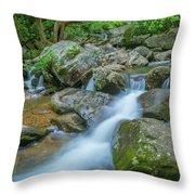 Catawba Stream Cascades At High Shoals Falls In North Carolina Throw Pillow by Ranjay Mitra