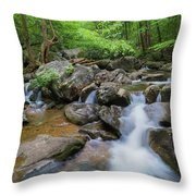 Catawba Stream In Pisgah National Forest Throw Pillow