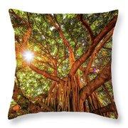 Catch A Sunbeam Under The Banyan Tree Throw Pillow