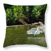 Catch Of The Day Series - 1 Throw Pillow