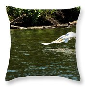 Catch Of The Day Series - 2 Throw Pillow