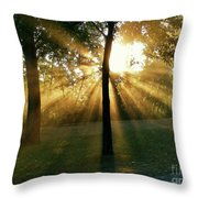 Catch Some Rays Throw Pillow