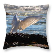 Catching Rays At The Beach Throw Pillow