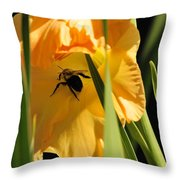 Catching Shade Throw Pillow