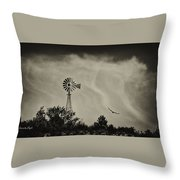 Catching The Updraft Throw Pillow