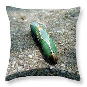 Caterpillar 3 Throw Pillow