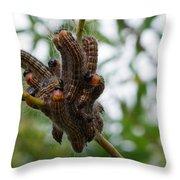 Caterpillar Group Hug Throw Pillow