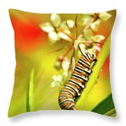 Caterpillar Stage 2 Throw Pillow