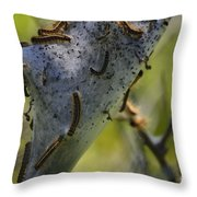 Caterpilliars Throw Pillow by Stephanie  Varner