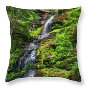Cathedral Falls 2 - Paint Throw Pillow