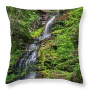 Cathedral Falls 2 Throw Pillow