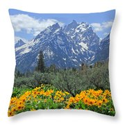 Dm9328-cathedral Group Tetons  Throw Pillow