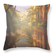 Cathedral Redwoods Throw Pillow