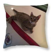Catilac Throw Pillow