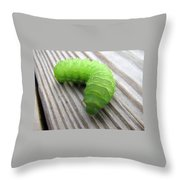 Catipillar 2 Throw Pillow