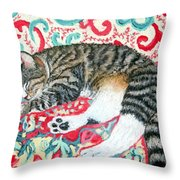 Catnap Time Throw Pillow