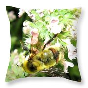 Catnip And The Bee Throw Pillow