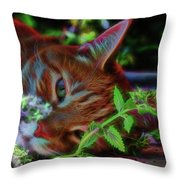 Catnip Chillin Throw Pillow by Beth Sawickie