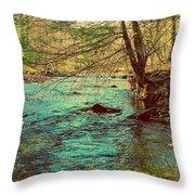 Catoctin Spring Throw Pillow