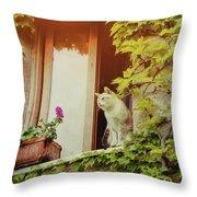 Cats Eye View Throw Pillow