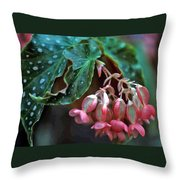 Cat's Paw Begonia Throw Pillow