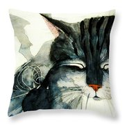 Cats Whiskers Throw Pillow