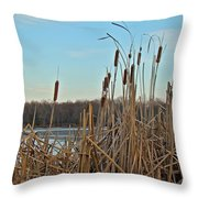 Cattails At Skymount Pond Pa Throw Pillow