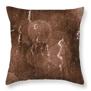 Cattails In Snowstorm 8 Throw Pillow
