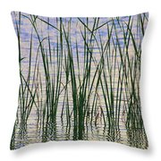 Cattails In The Lake Throw Pillow