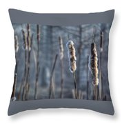 Cattails In The Winter Throw Pillow
