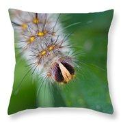 Catterpillar In Close Up 2 Throw Pillow