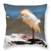 Cattle Egret In Breeding Plumage Throw Pillow