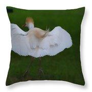 Cattle Egret Prepared For Landing - Digitalart Throw Pillow