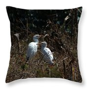Cattle Egrets In A Pasture Throw Pillow