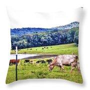 Cattle Farm Throw Pillow