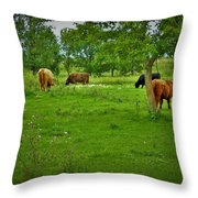 Cattle Grazing In A Lush Pasture Throw Pillow