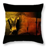 Cattle In Sunny Texas Throw Pillow