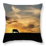 Cattle Sunset Silhouette Throw Pillow